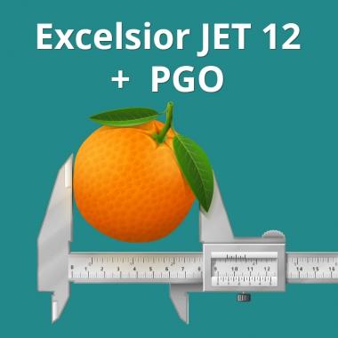 Excelsior JET 12 - теперь с PGO